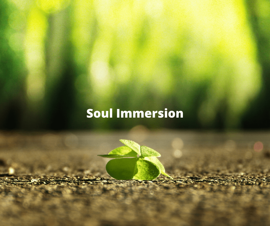 soul immersion WE
